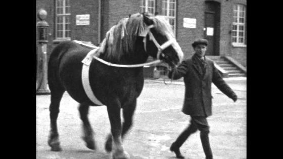 Hästhoppning omkring 1930 talet Del 8