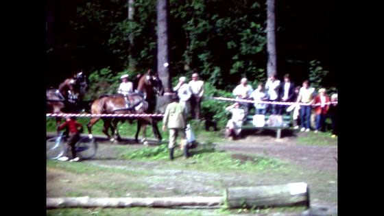 Häst och vagn fyrspann 1