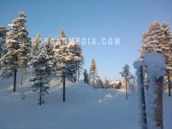 Snölandsakap