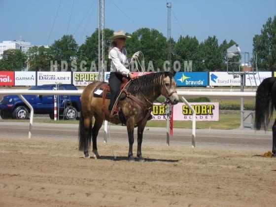 Cowboy lassoing