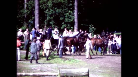 Häst och vagn fyrspann 2