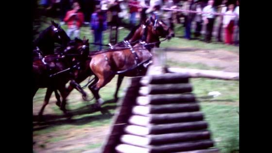 Häst och vagn fyrspann 3