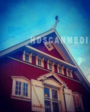 The falcon house